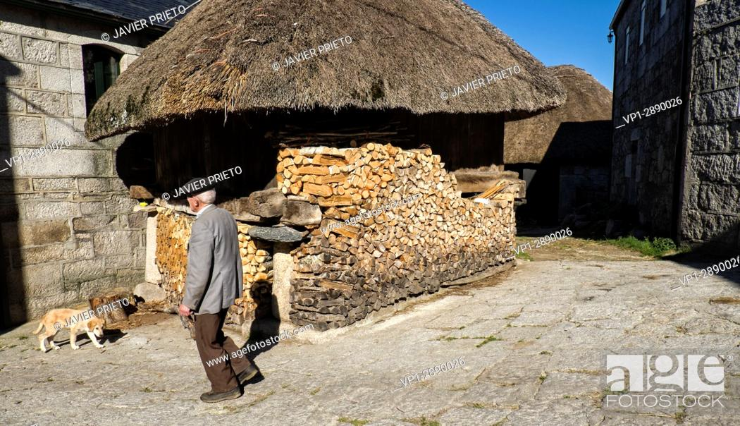 Stock Photo: Traditional Horreo with teak roof and wood stacked to prevent it from getting wet in Piornedo de Ancares. The Ancares. Lugo. Galicia. Spain.