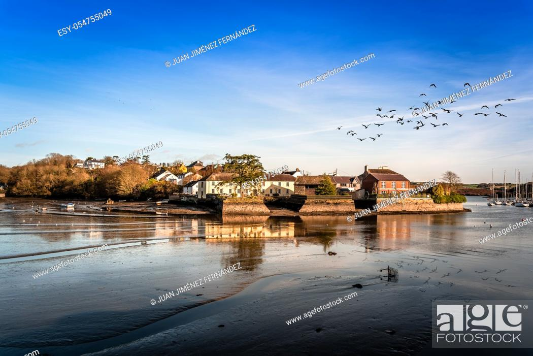 Stock Photo: Scenic view of the harbor of Kinsale in the county of Cork, Ireland, with low tide and flock of birds fliying over water.