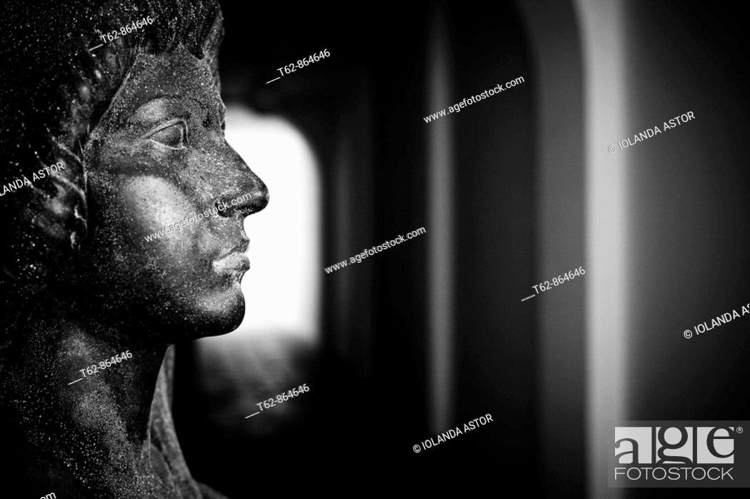 Stock Photo: Female bust. Twentieth century. S. Costa. Pau Casals Museum. Vendrell. Catalonia. Spain.
