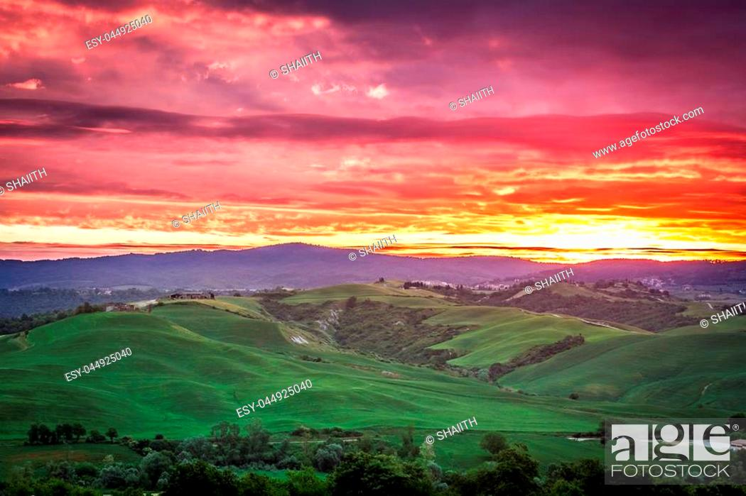Stock Photo: Beautiful view of green fields and meadows at sunset in Tuscany, Italy.