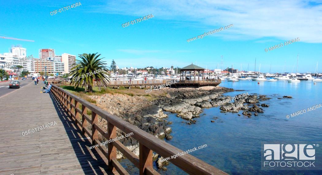 Stock Photo: Punta del este uruguay city.