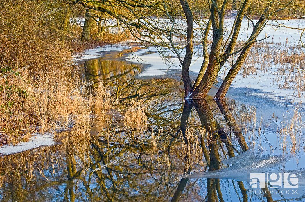 "Stock Photo: Winter in Biosphere reserve """"Elbe River Landscape"""", Amt Neuhaus, Lower Saxony, Germany, Europe."