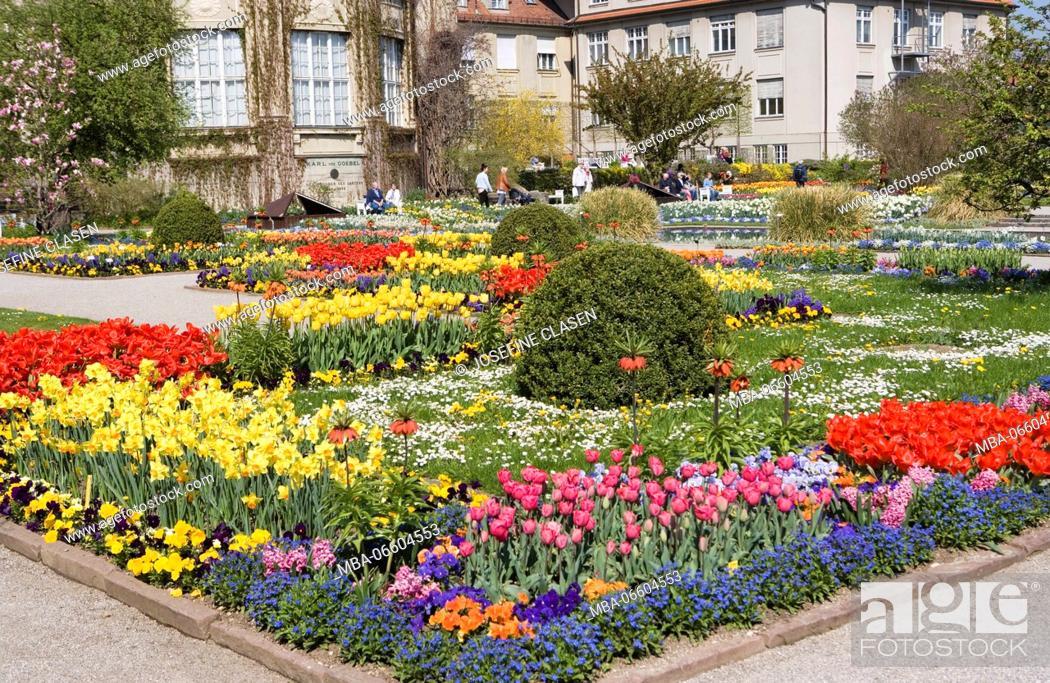 Botanischer Garten München Nymphenburg Botanical Garden Approx