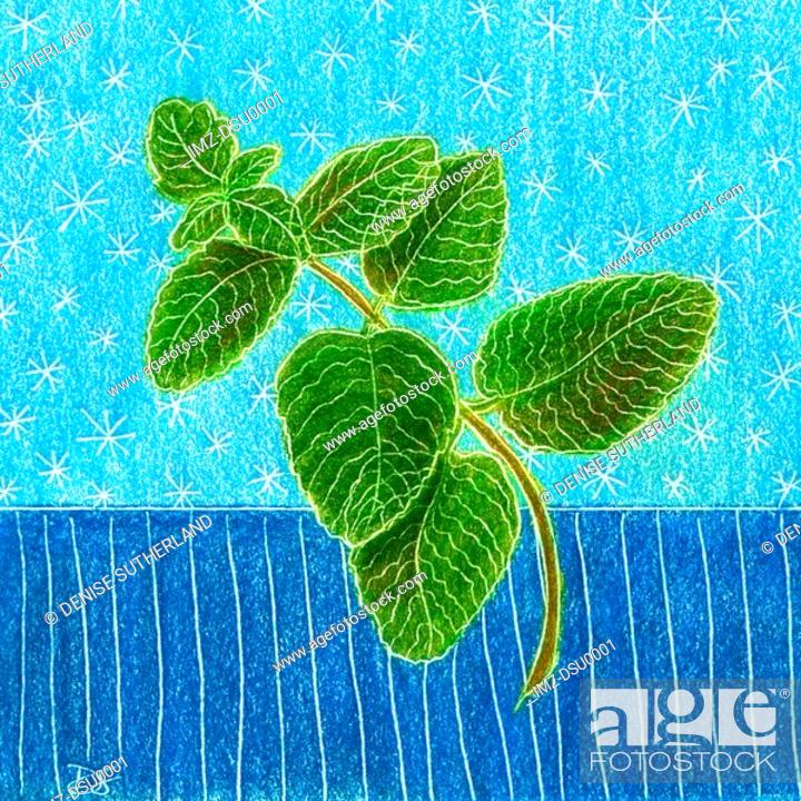 Stock Photo: An illustration of green mint leaves.