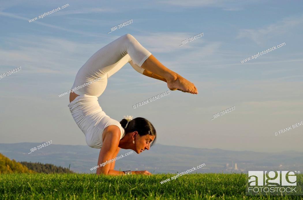 2a366ac10165f Stock Photo - Young woman practising Hatha yoga outdoors, showing the pose  vrischikasana, scorpion pose, Nove Mesto, Okres Teplice, Czech Republic,  Europe