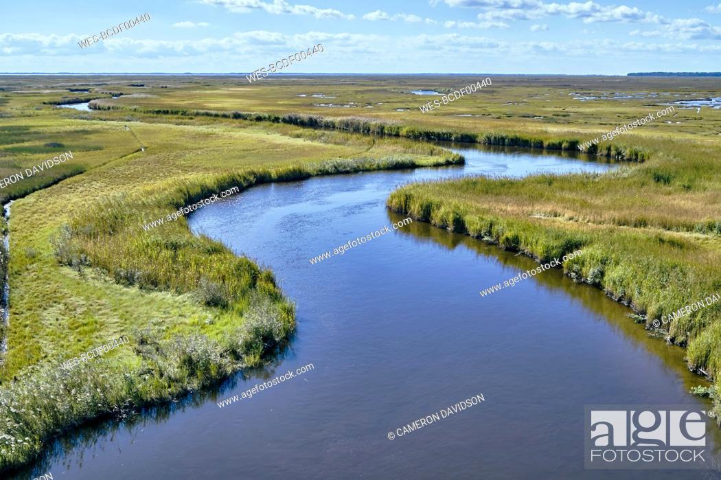 Stock Photo: USA, Maryland, Drone view of marsh along Nanticoke River on Eastern Shore.