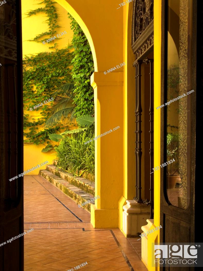 Stock Photo: Andalusian patio with plants painted ocher, Sevilla, Andalucia, Spain, Europe.