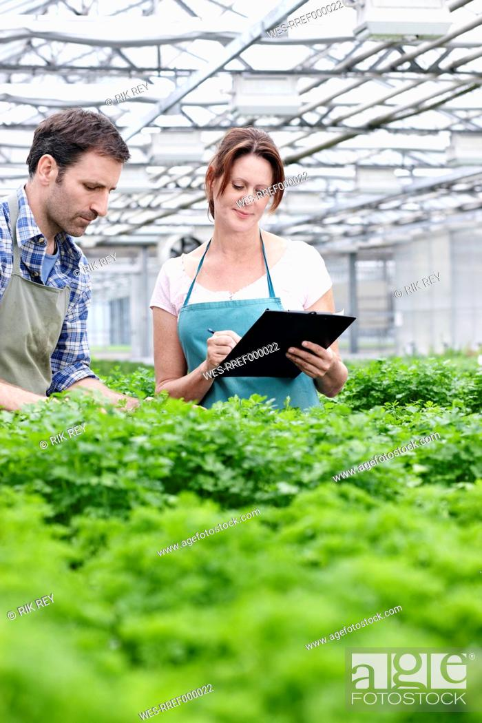Stock Photo: Germany, Bavaria, Munich, Mature man and woman with clip board in greenhouse.