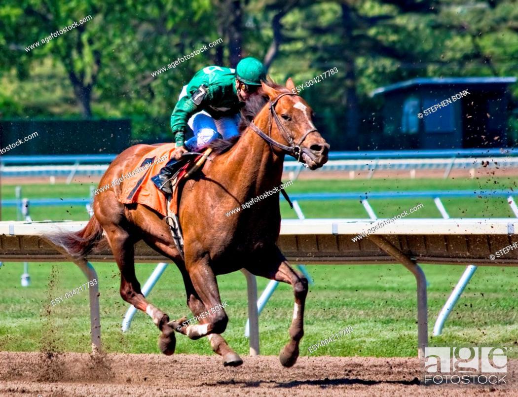 Stock Photo: Horse Race.