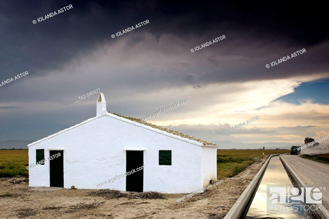 Stock Photo: House. Rice field, Ebro River delta. Tarragona province, Catalonia, Spain.