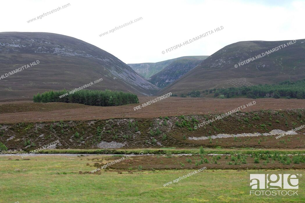 Imagen: Glen Feshie, Cairngorms National Park, Grampian Mountains, Highlands, Scotland, United Kingdom / Glen Feshie, Cairngorms Nationalpark, Grampian Mountains.