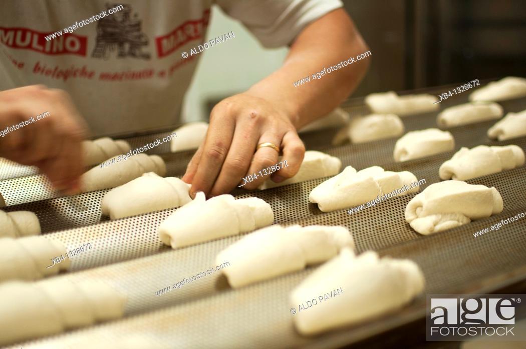 Stock Photo: Italy, Piedmont, Turin, bread kneading at Panificio Perfetti Giorgio.