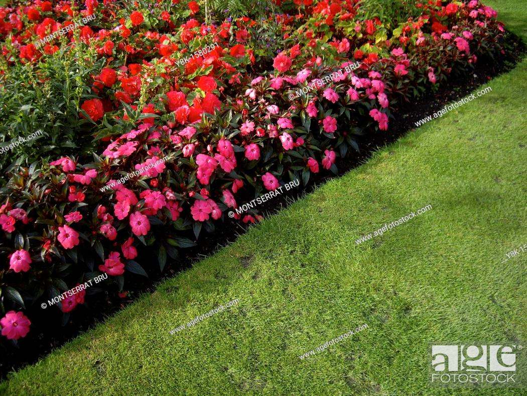 Stock Photo: Diagonal shaped flowerbed.