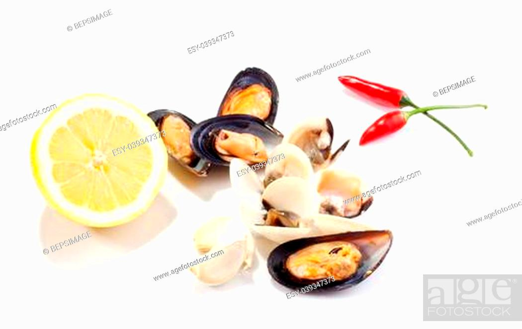 Stock Photo: Mussels and clams on white background.