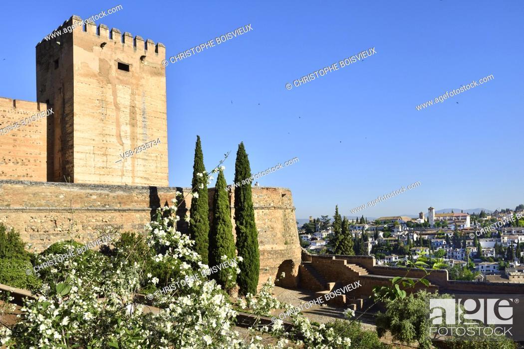 Stock Photo: Spain, Andalusia, Granada, World Heritage Site, The Alhambra, The Alcazaba and Albaicin.