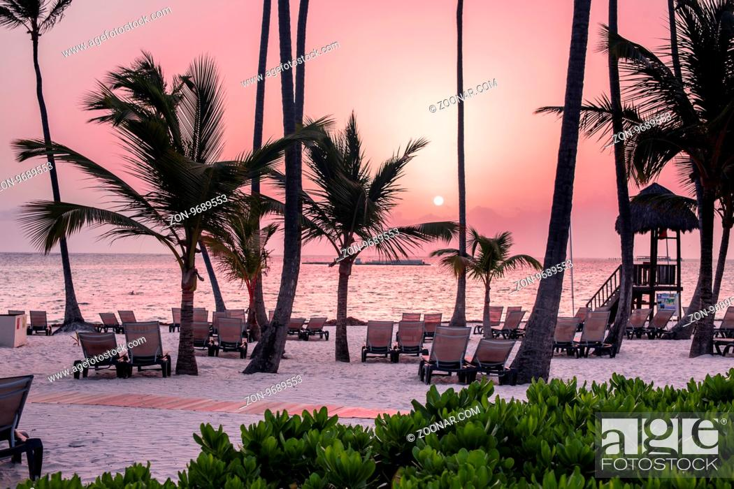 Stock Photo: Beach with palm trees at sunrise in the Dominican Republic.
