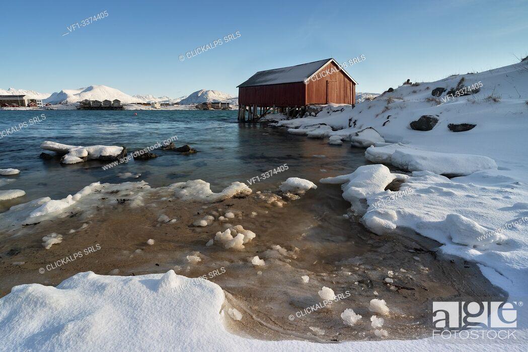 Stock Photo: the typical rorbuer house over the coastline, Sommaroy, Brensholmvegen, Troms county, Northen Norway, Europe.