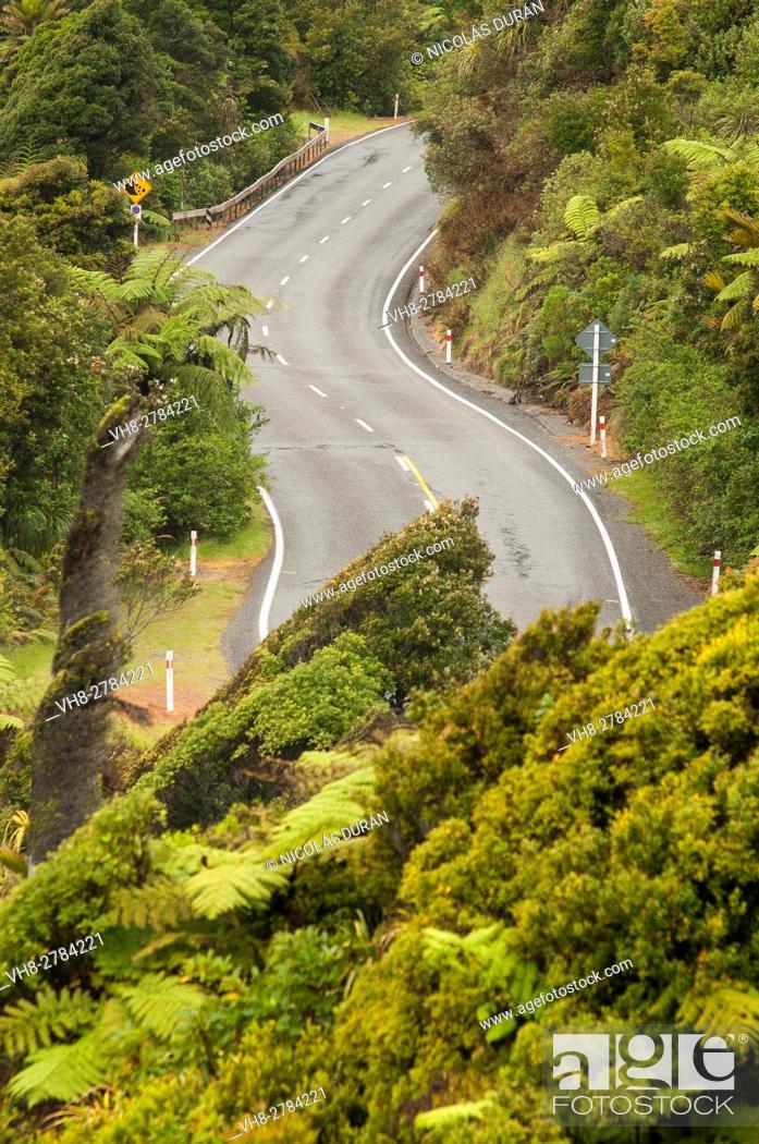 Stock Photo: Road, West Coast, South Island, New Zealand.