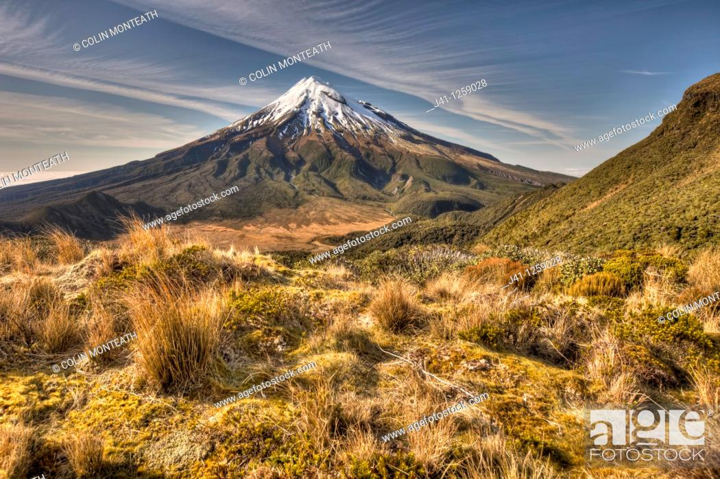 Stock Photo: Mt Egmont / Taranaki from Pouakai Range, alpine shrubs,and tussock covered slopes, Taranaki.