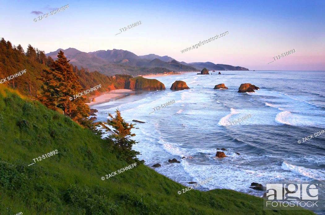 Stock Photo: Ecola State Park overlooking Canon Beach, Oregon, at sunset.