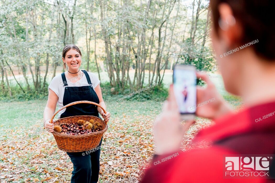 Stock Photo: Women taking photo of chestnut collecting, Rezzago, Lombardy, Italy.
