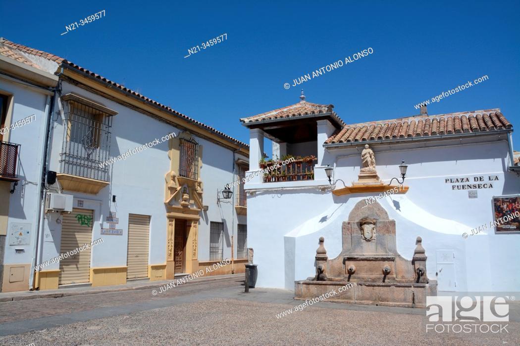 Stock Photo: Plaza de la Fuenseca. City of Cordoba, Andalucia, Spain, Europe.