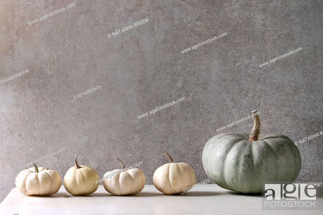 Stock Photo: Grey Confection and white whole uncooked decorative pumpkins in row on white marble table with grey wall at background. Autumn minimalist decoration.