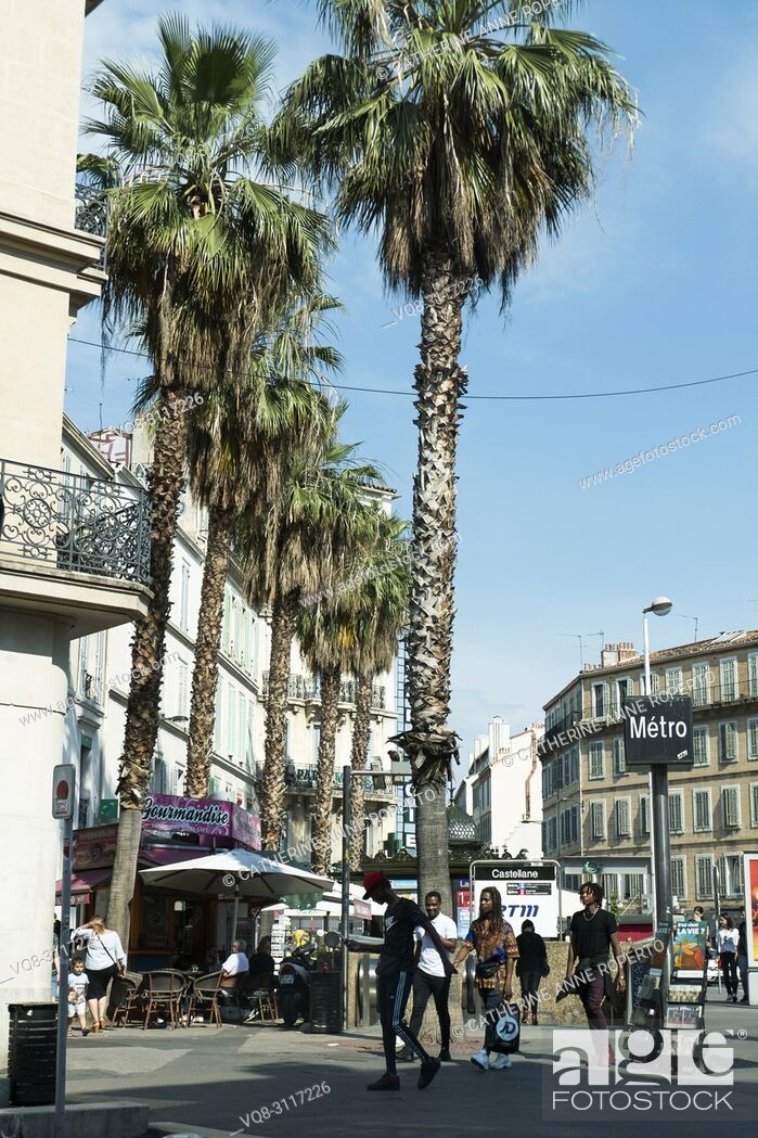Imagen: Blue sky and palm trees by the Castellane Metro Station in Marseille, Provence, France.