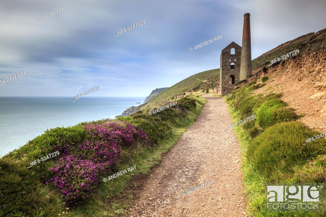 Imagen: The South West Coast Path leads the viewers eye towards Towanroath Engine House at Wheal Coates, near St Agnes in Cornwall.