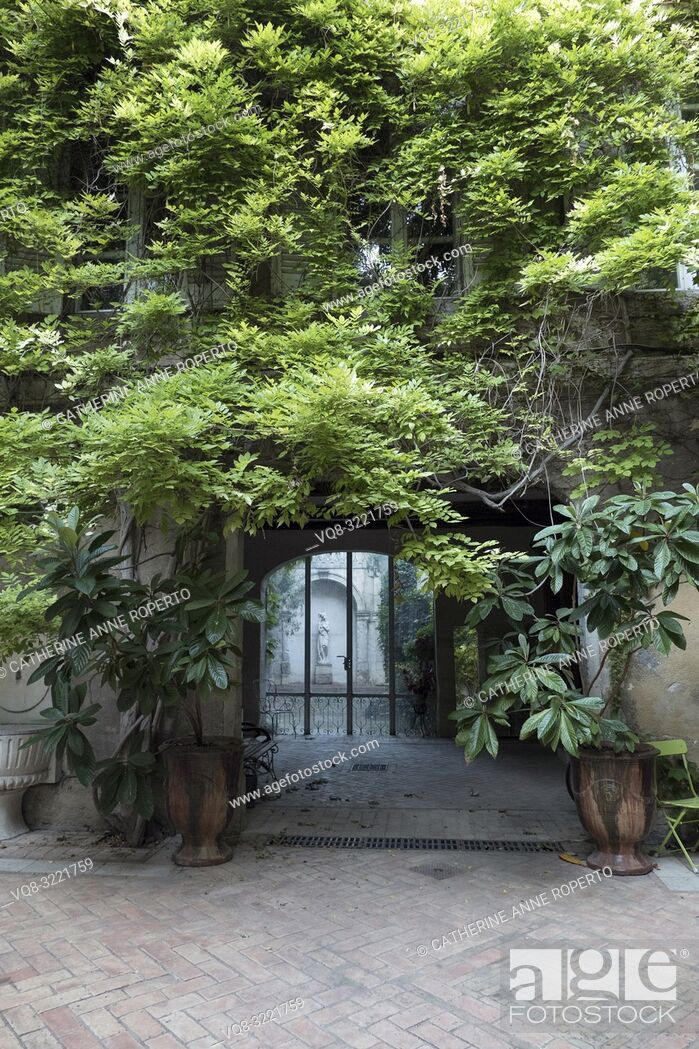 Imagen: Historic tiled courtyard with wisteria draped archway leading to classical female statue in white marble, L'Isle-sur-la-Sorgue; Vaucluse; Provence; France.