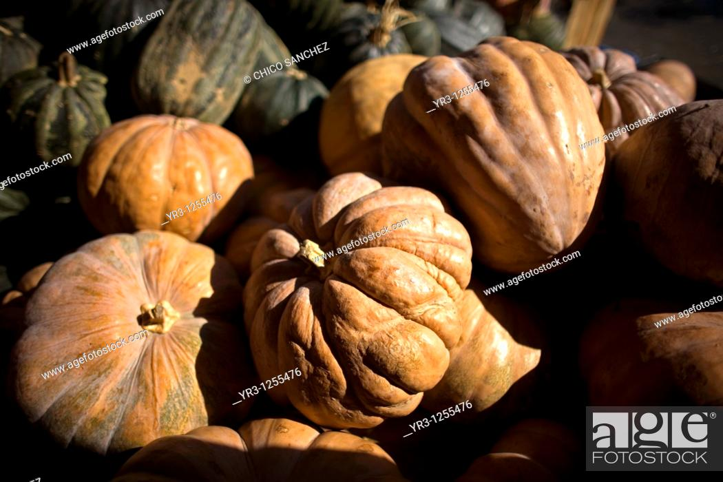 Stock Photo: Pumpkins for Halloween celebration are for sale at Jamaica Flower Market in Mexico City.