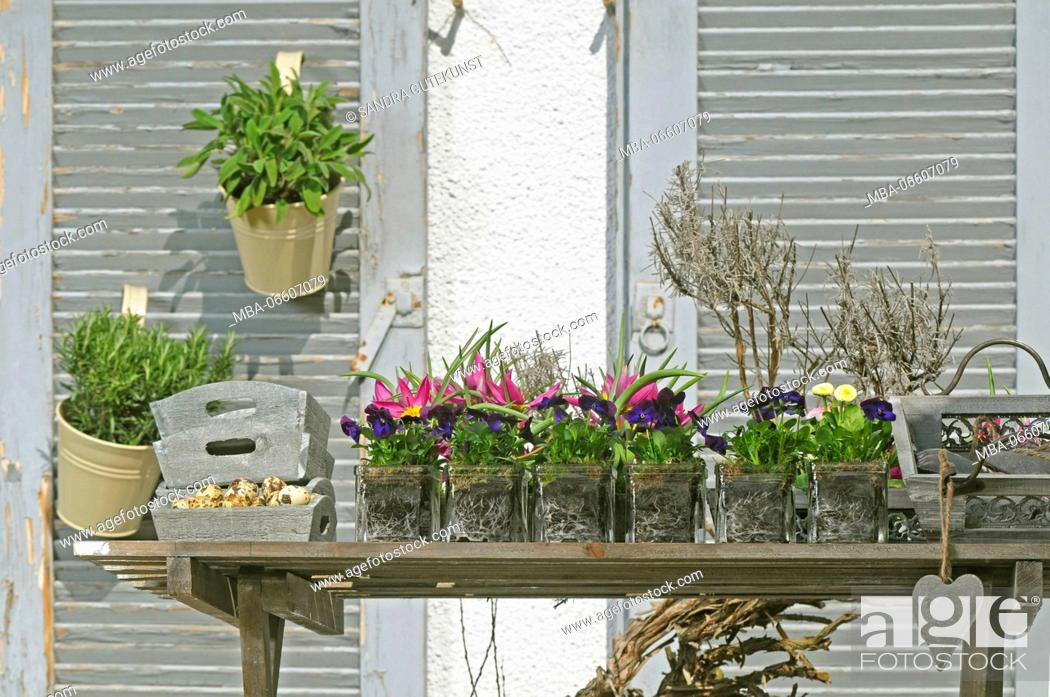 Stock Photo: Small flowerpots and herbs on balcony as a spring decoration, close-up.