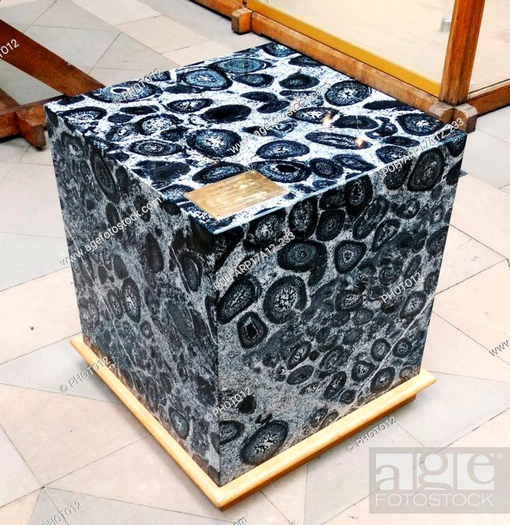 Orbicular granite, an uncommon plutonic rock type which is