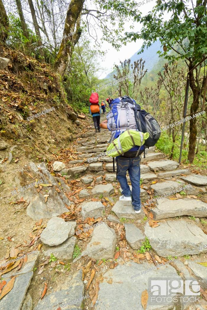 Imagen: Hikkers on Route, Mountain Footpath, Trek to Annapurna Base Camp, Annapurna Conservation Area, Himalaya, Nepal, Asia.