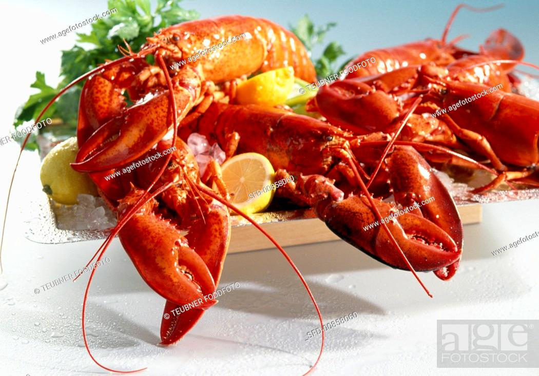 Stock Photo: American lobster, cooked.
