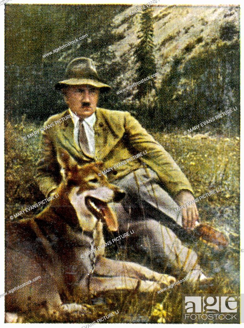 Stock Photo: ADOLF HITLER With his favourite dog, at Berchtesgaden, circa 1933.