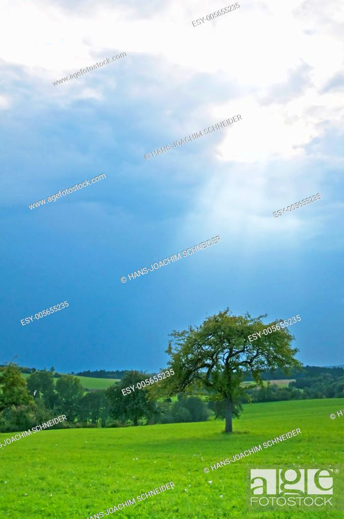 Stock Photo: shafts of sunlight in Germany.