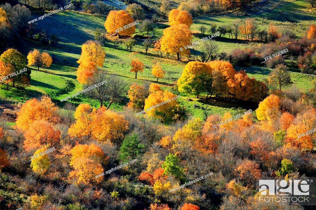 Stock Photo: Autumn landscape, Parc naturel régional des Préalpes d'Azur, Alpes-Maritimes, 06, Cote d'Azur, PACA, France.