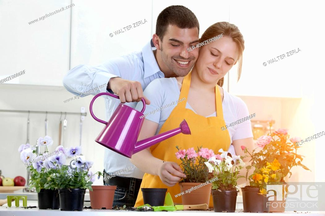 Stock Photo: Couple watering potted plants indoors.