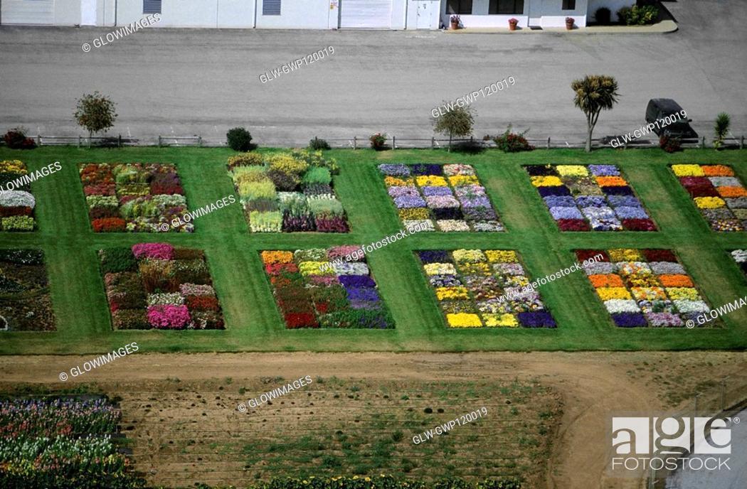 Stock Photo: Experimental flower plots.