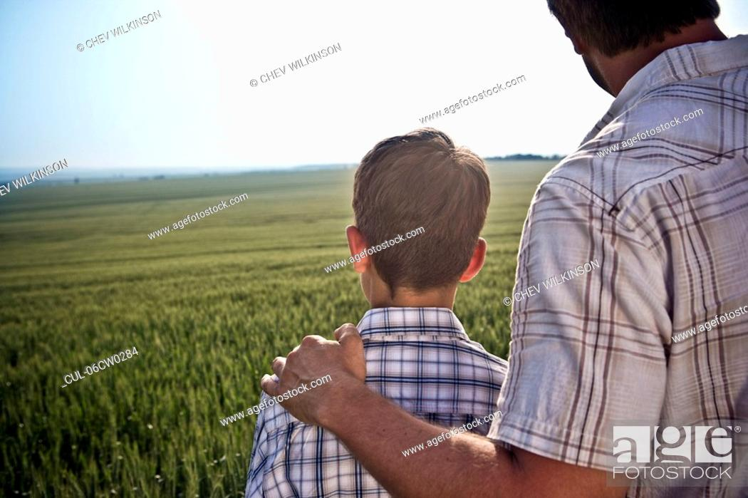 Stock Photo: Father and son in wheat-field.