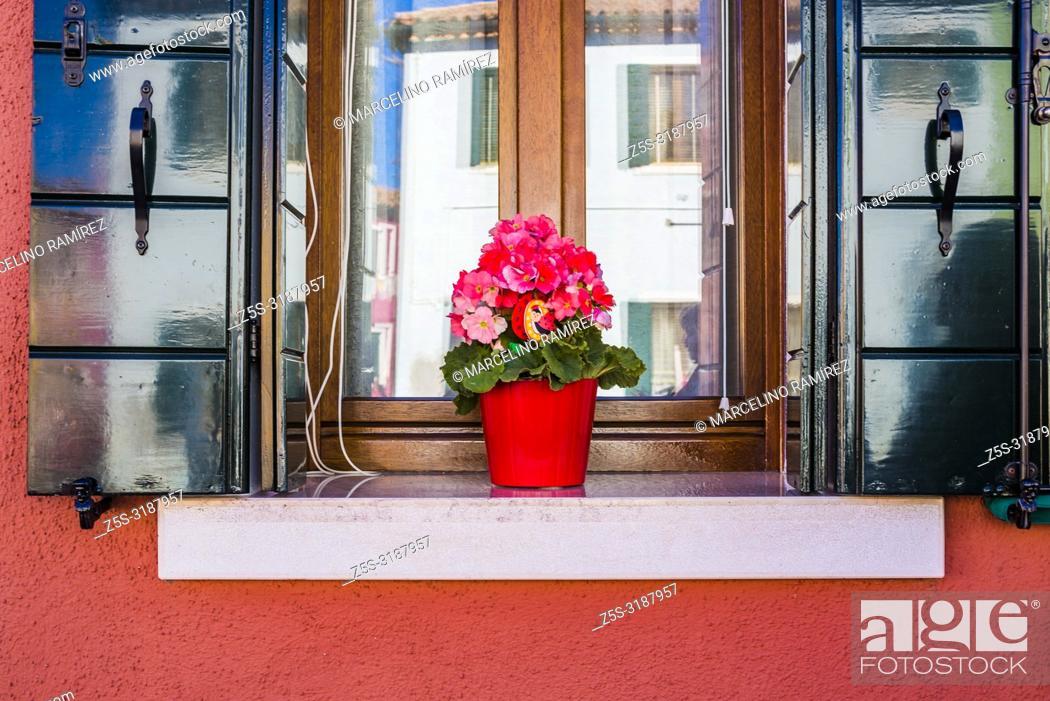Stock Photo: Flowerpots, detail of houses. Burano, Venice, Veneto, Italy, Europe.