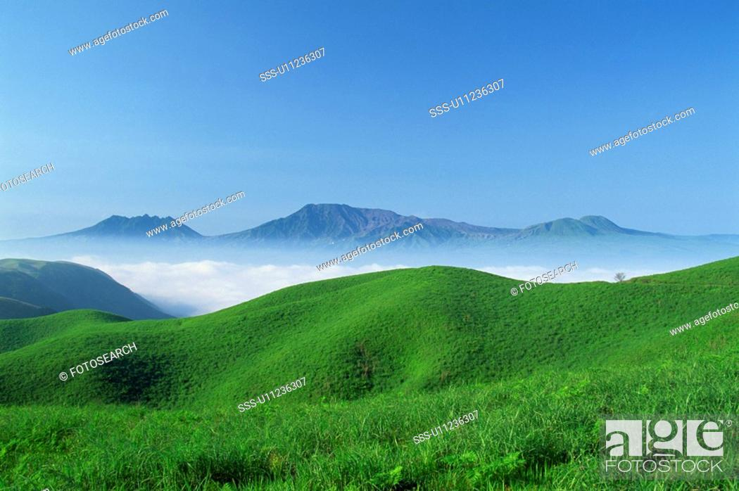 Stock Photo: Fresh Green And A Sea Of Clouds.