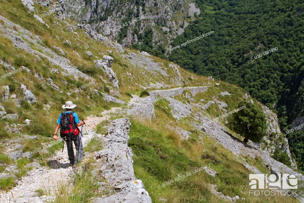Imagen: Hikers walking down from Tresviso, a small village in Picos de Europa National Park by historic Urdón path to La Hermida Gorges  Peñarrubia  Cantabria, Spain.