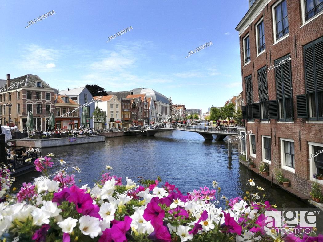 Stock Photo: Netherlands, Holland, Leida.
