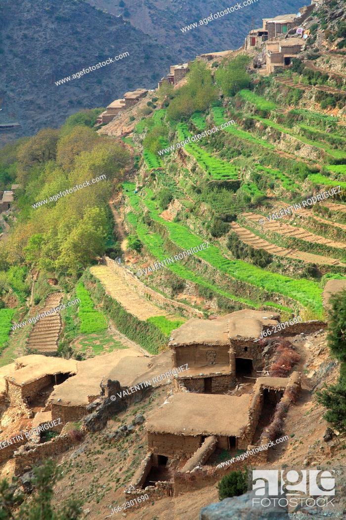 Stock Photo: landscape with terraced farming in the valley Arradene. atlas Mountains. Morocco.