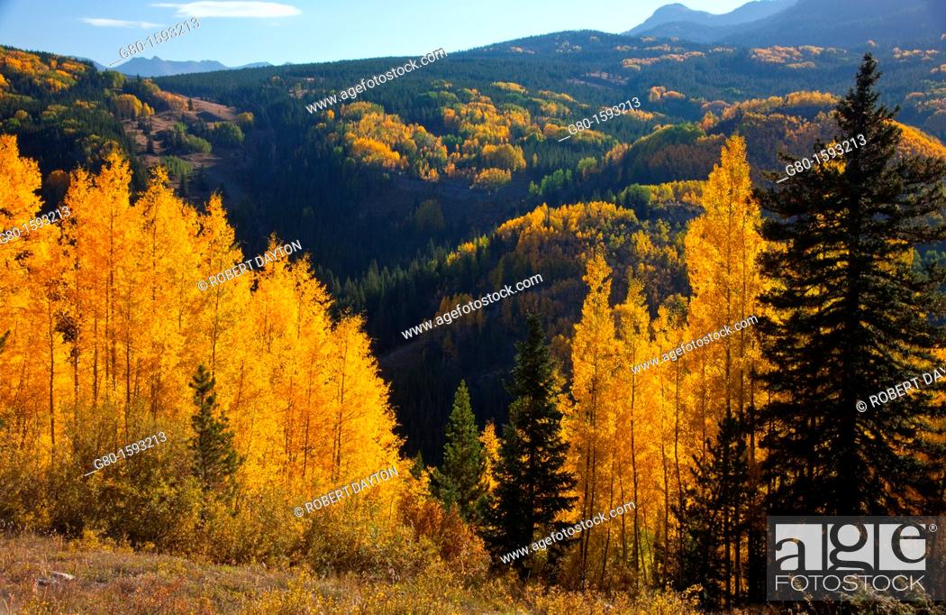 Stock Photo: Autumn in the Rocky Mountains.