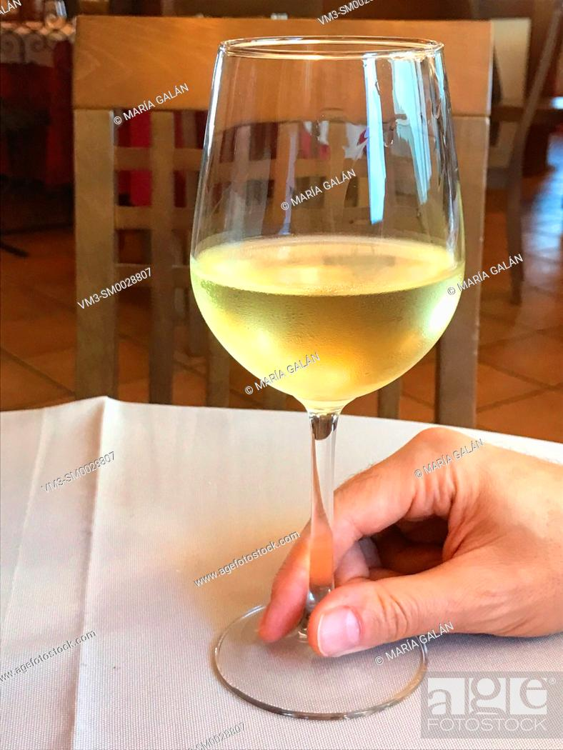 Stock Photo: Hand holding a glass of white wine.