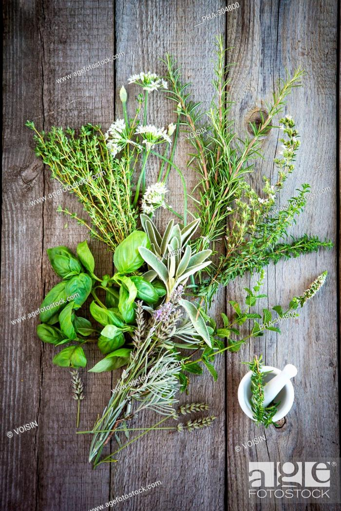 Stock Photo: Assorted herbs.