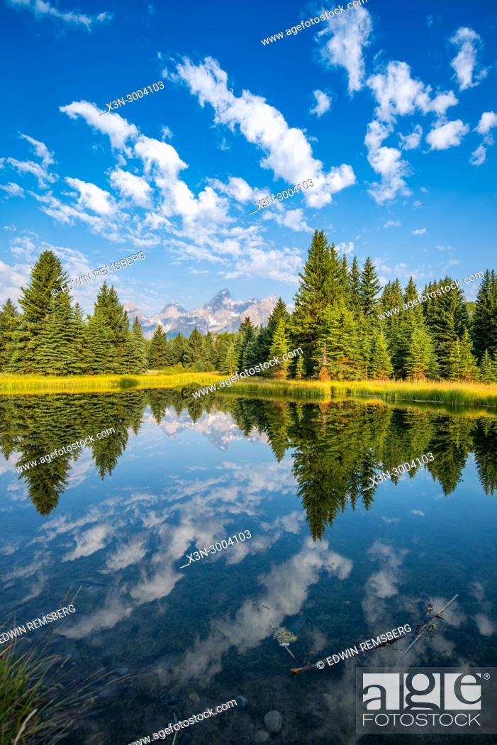 Photo de stock: Still water reflects mighty Teton Mountain Range and forest foliage with cloudy skies, Grand Tetons National Park, Teton County, Wyoming. USA.